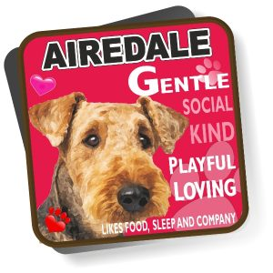 Coaster - Airedale Terrier No2