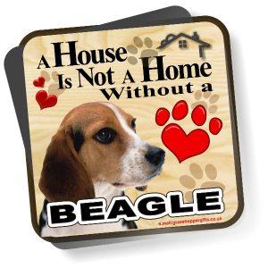 Coaster - Beagle Home
