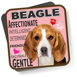 Coaster - Beagle No2