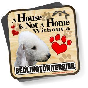 Coaster - Bedlington Terrier Home