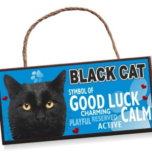 Sign - Black Cat No2 Bright