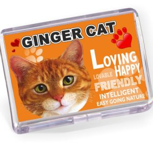 Fridge Magnet - Ginger Cat No2