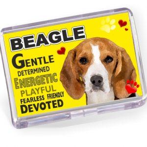 Fridge Magnet - Beagle No2