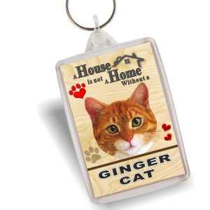 Key Ring - Ginger Cat