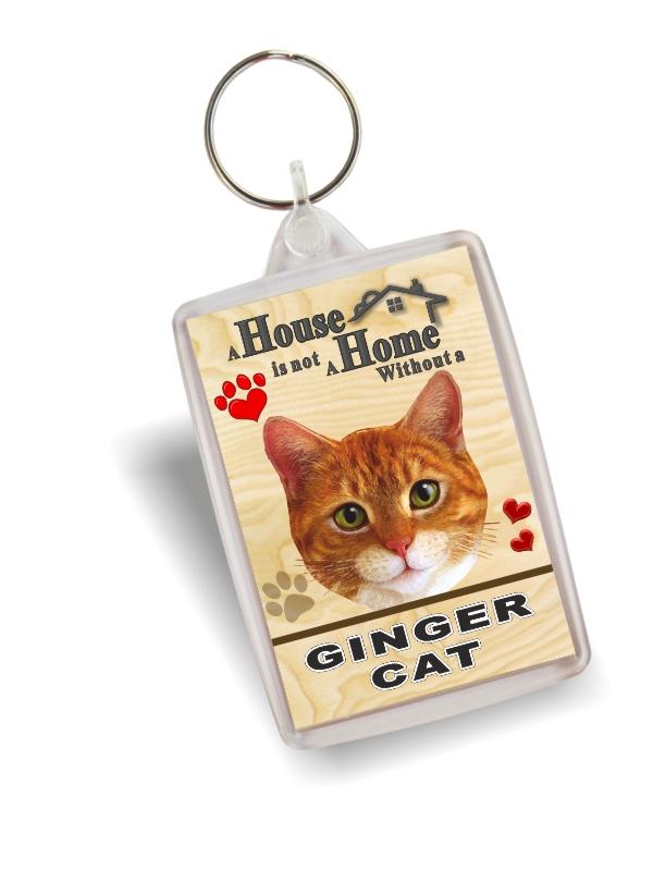 Key Ring - Ginger Cat