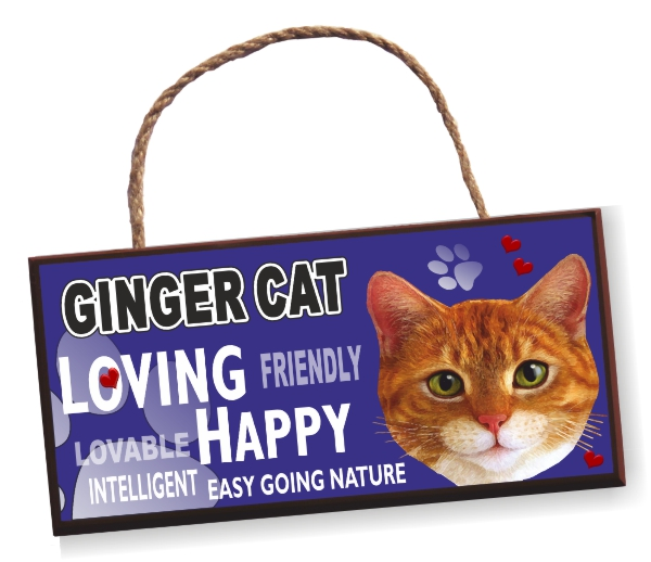 Sign - Ginger Cat Bright