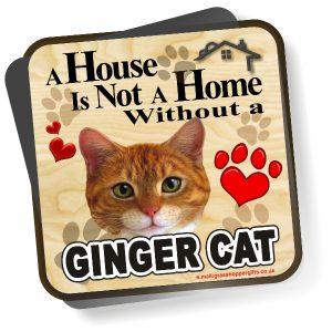 Coaster - Ginger Cat Home