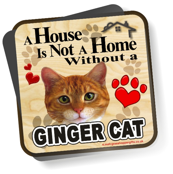 Coaster - Ginger Cat Home