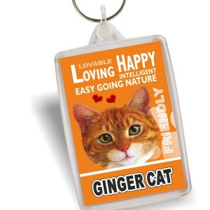 Key Ring - Ginger Cat No2