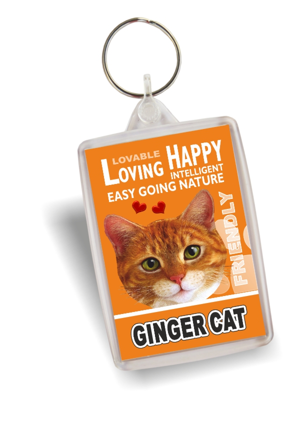 Key Ring - Ginger Cat No2