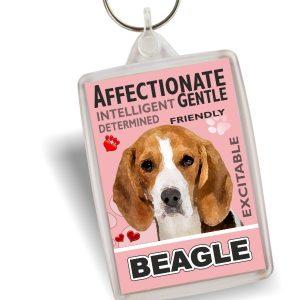 Key Ring - Beagle No2