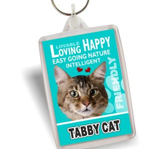 Key Ring - Tabby Cat No2