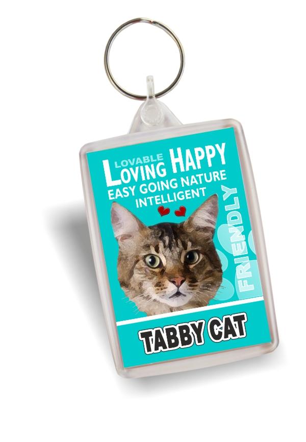 Key Ring - Tabby Cat No2