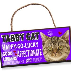 Cat Sign - Tabby Cat Bright