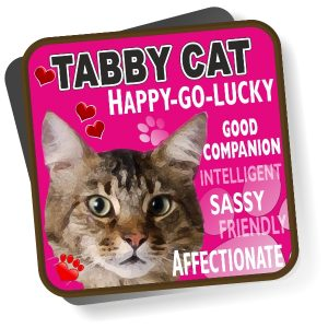 Coaster - Tabby Cat Bright