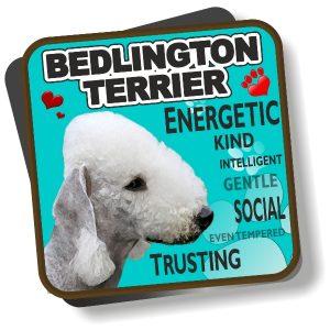 Coaster - Bedlington Terrier No2