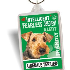 Key Ring - Airedale Terrier No2