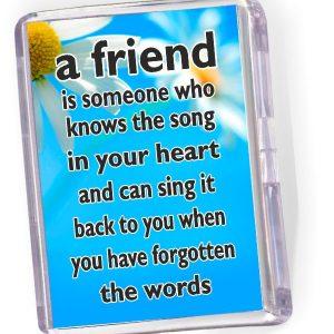 Fridge Magnet A Friend is Someone...