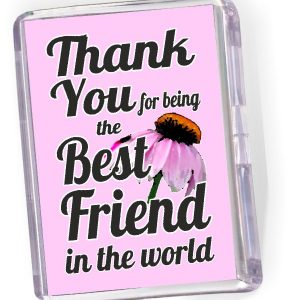 Fridge Magnet Thank You for Being the Best Friend...'