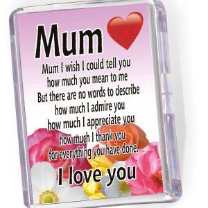 Fridge Magnet Mum I Wish
