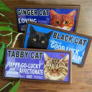 Cat & Animal Signs