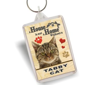Key Ring Tabby Cat Home
