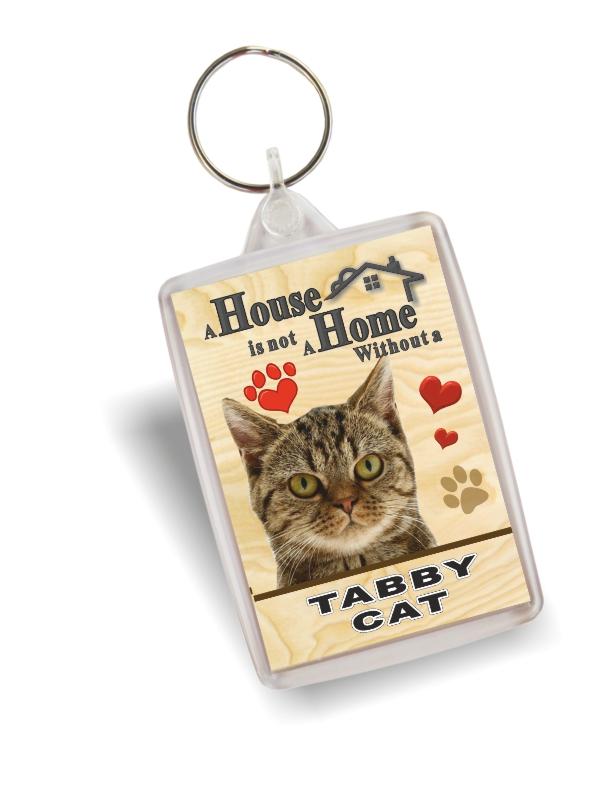 Key Ring Tabby Cat Home